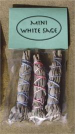 Baby White Sage Packaged, Native American Herbs